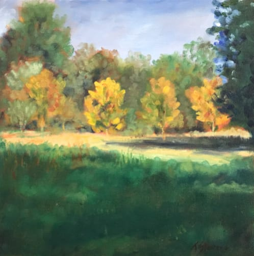 Riverwalk-Burnside Drive 36.0716N  79.0958W by Thomas Stevens