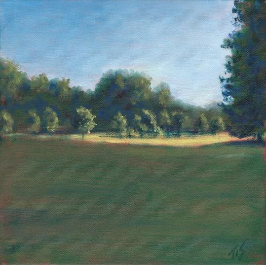 Burnside Field  36.071789N 79.095697W  (10) by Thomas Stevens