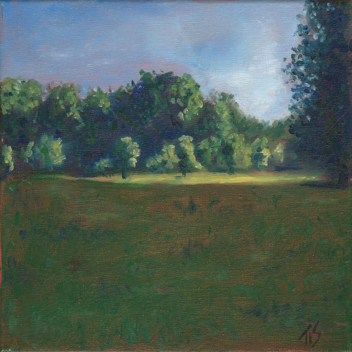 Burnside Field (study)  36.071789N 79.095697W by Thomas Stevens