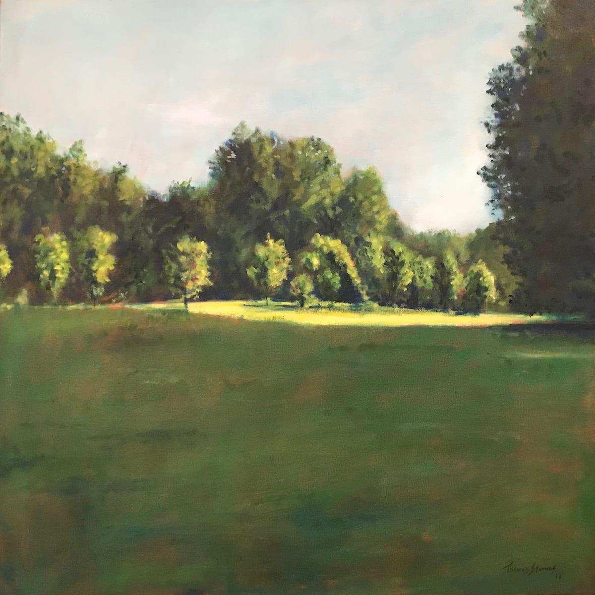Burnside Field  36.071789N 79.095697W  (24) by Thomas Stevens