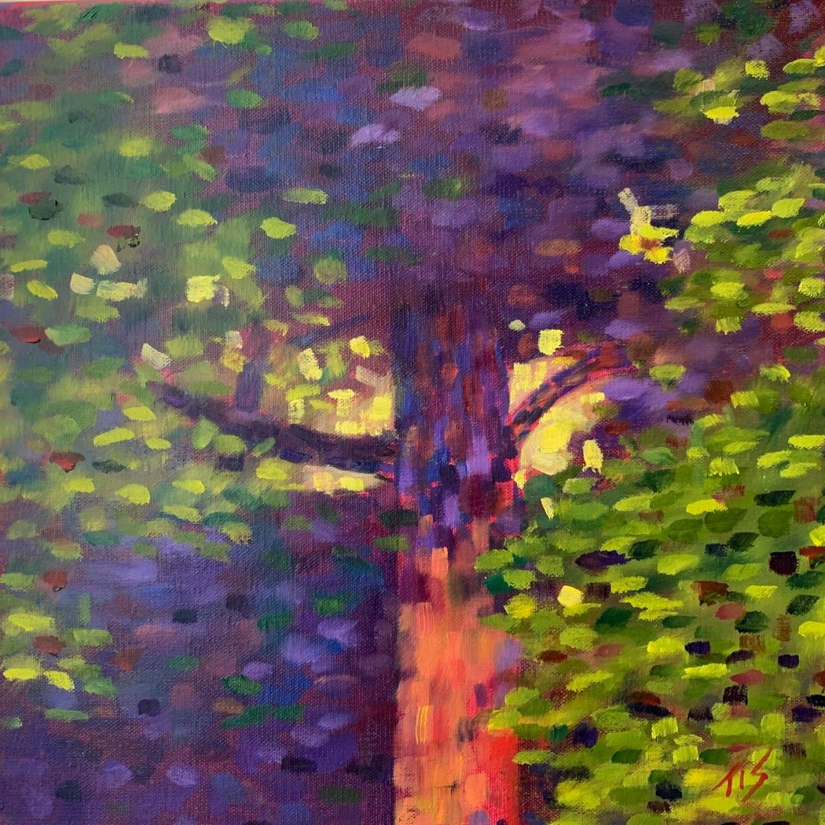 Creekside Maple  36.07663N 79.10364W by Thomas Stevens