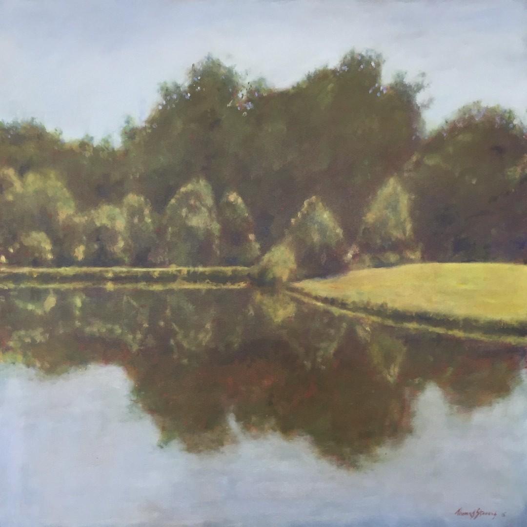 Meadowlands Pond  36.061322N 79.077439W by Thomas Stevens