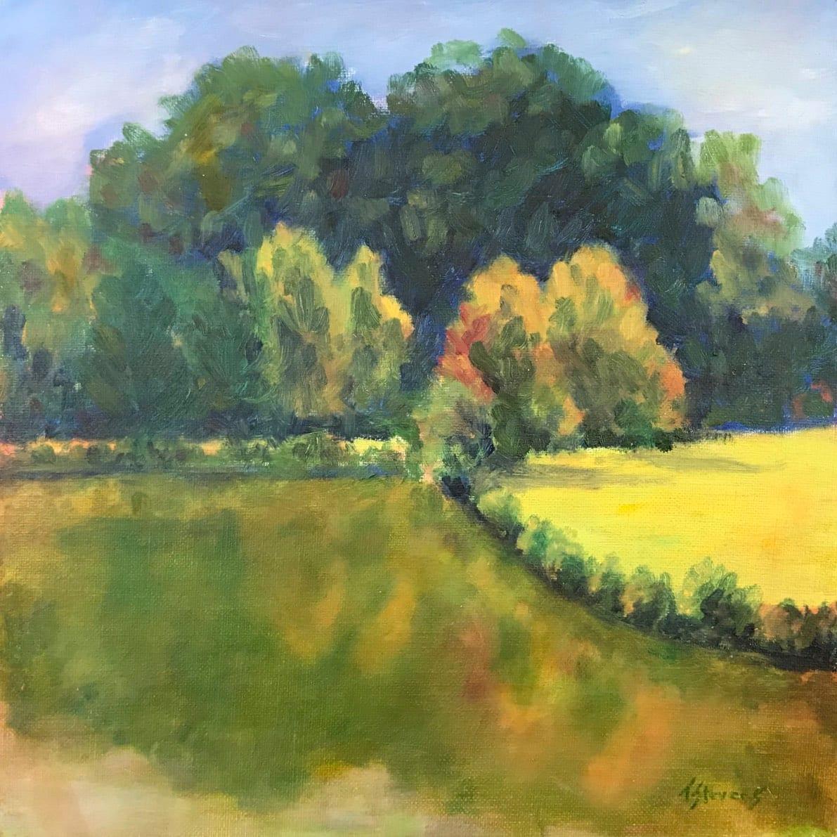 Meadowlands Pond  36.06123N  79.07744W by Thomas Stevens