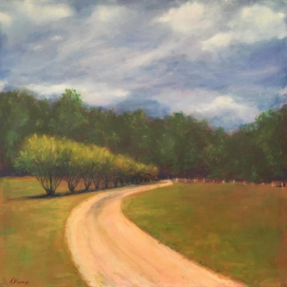 Moorefields Way (36.060306N 79.143872W) by Thomas Stevens