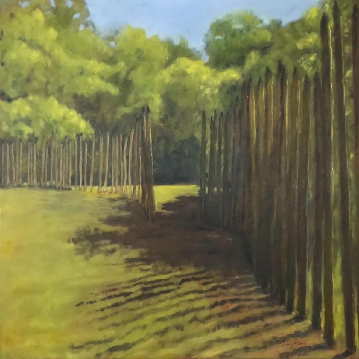 Shadow Gate   (Occaneechi series - 36.07242N 79.097786W) by Thomas Stevens