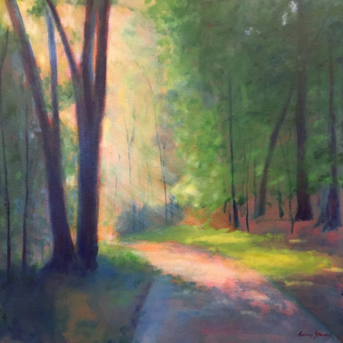 Riverwalk Mist   36.073275N 79.106111W by Thomas Stevens