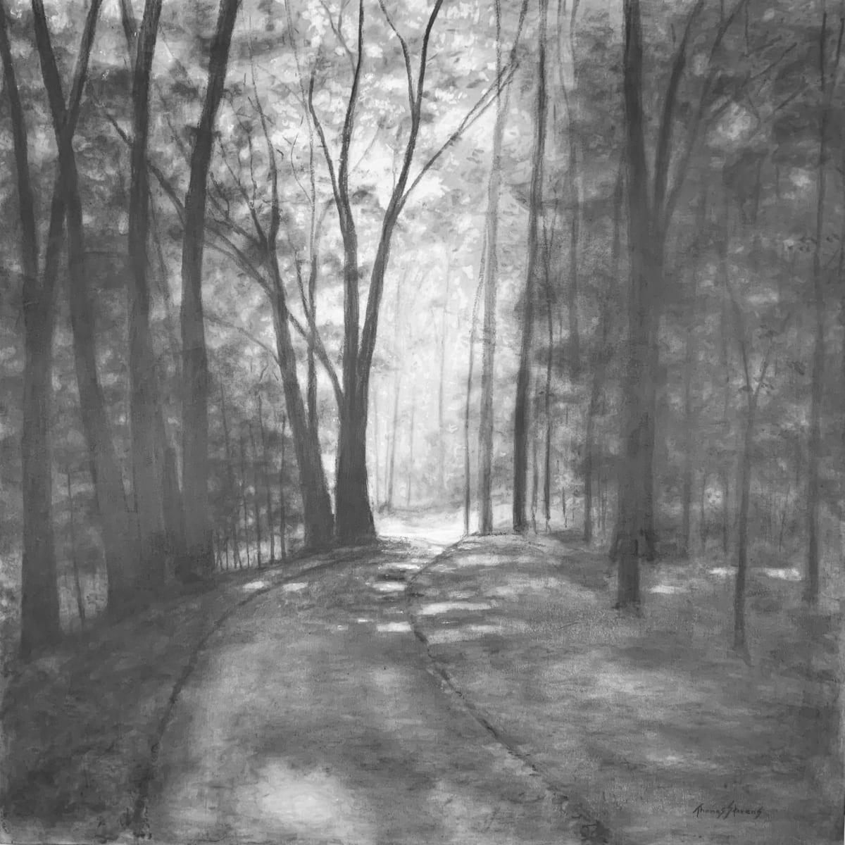 Riverwalk Morning View  36.07328N 79.10611W by Thomas Stevens