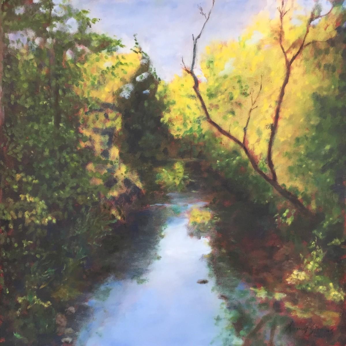 Eno River View 36.07287N 79.101111W by Thomas Stevens