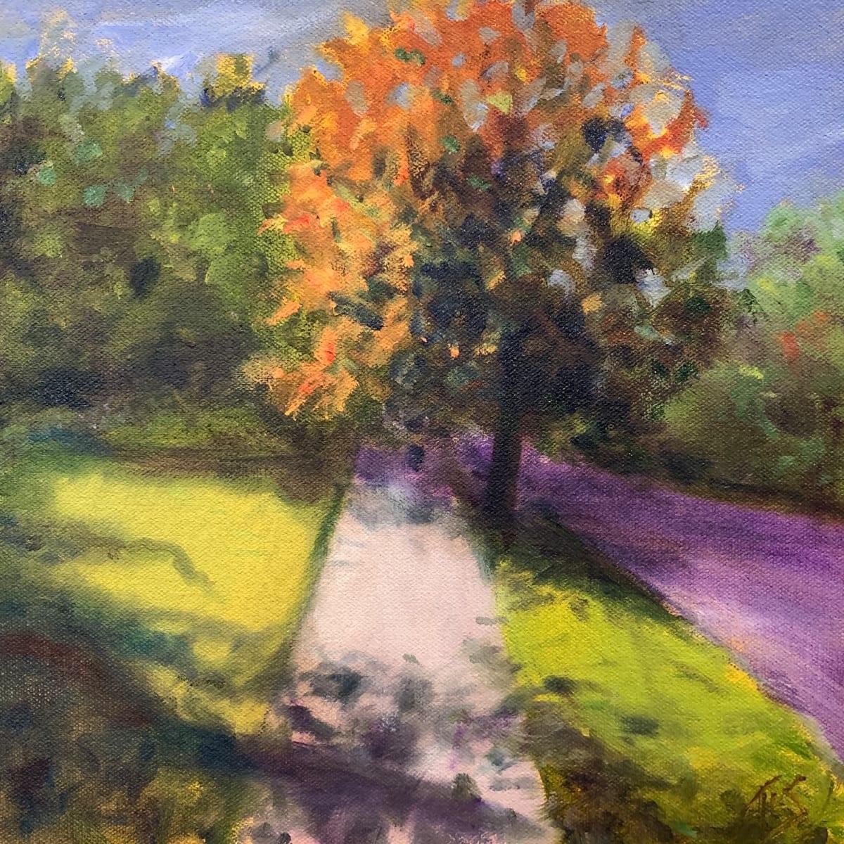 Wake Street Dogwood (sketch)  36.07603N  79.1024W by Thomas Stevens