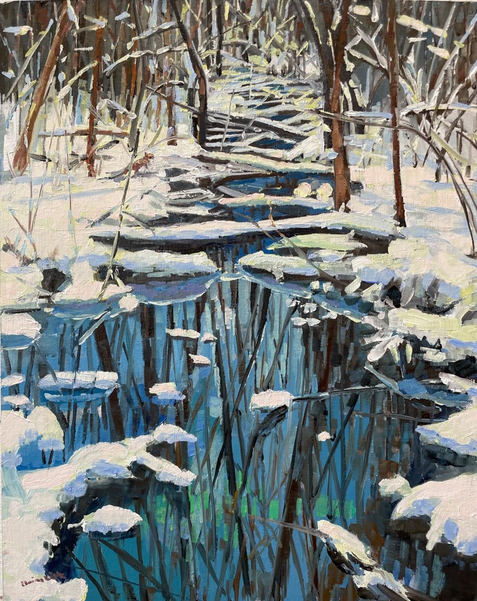 Winter Blanket by Elaine Lisle