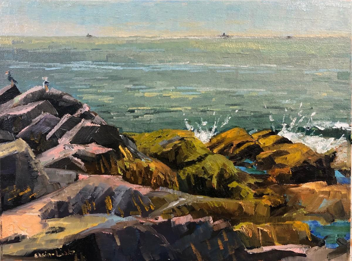 Two Gulls Lobster Cove by Elaine Lisle