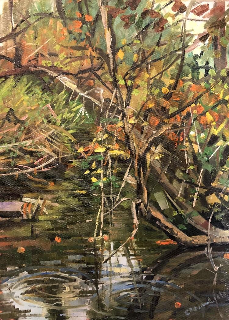 Rainy day ridley Creek by Elaine Lisle