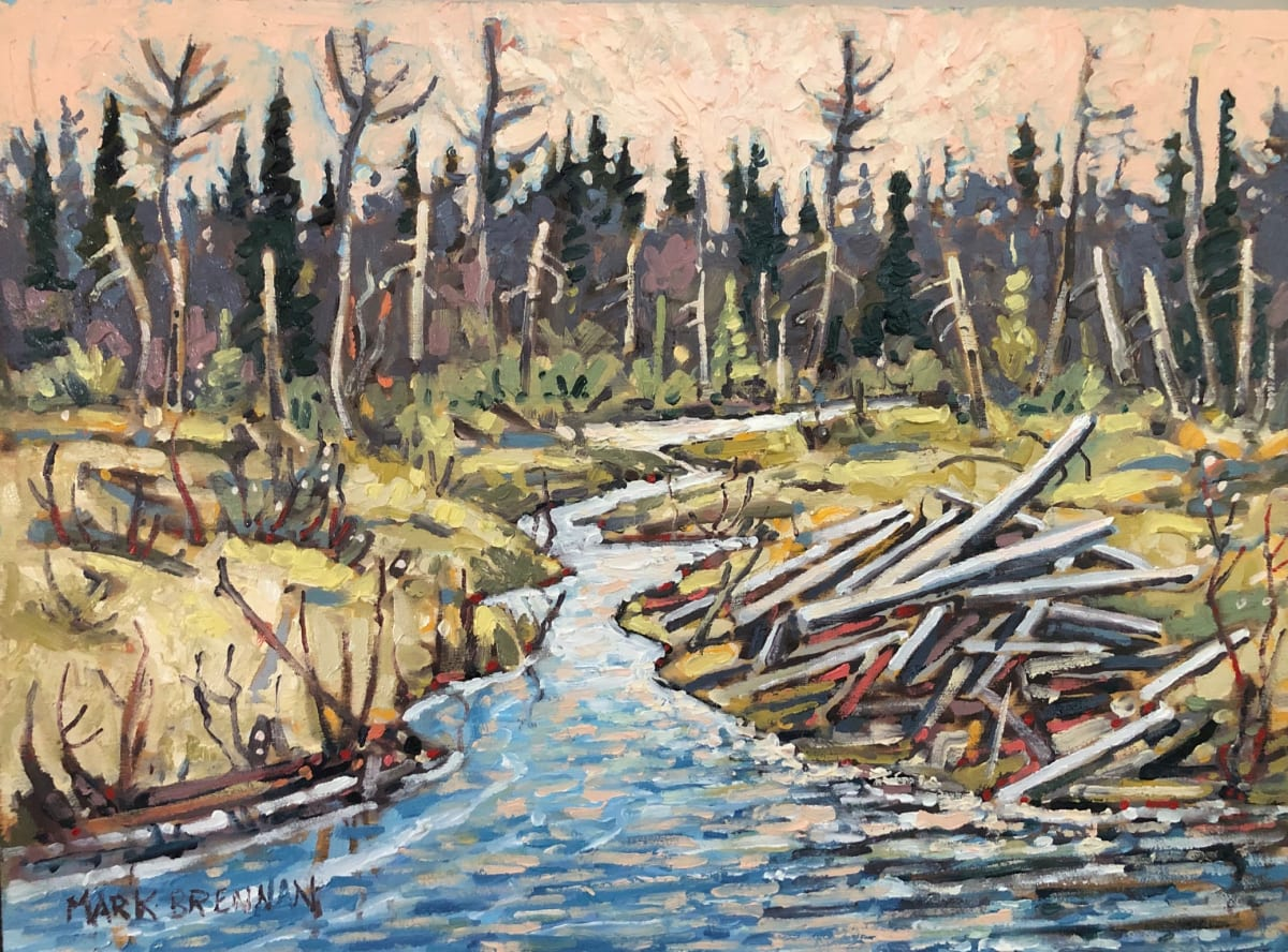 The Old Beaver Lodge, Whitehill, NS by Mark Brennan