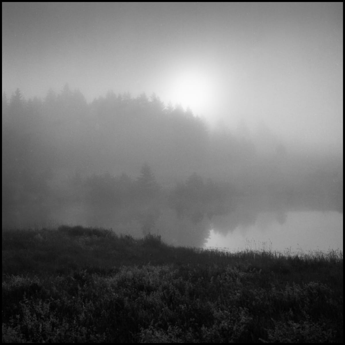 Boreal Sunrise, Nova Scotia by Mark Brennan