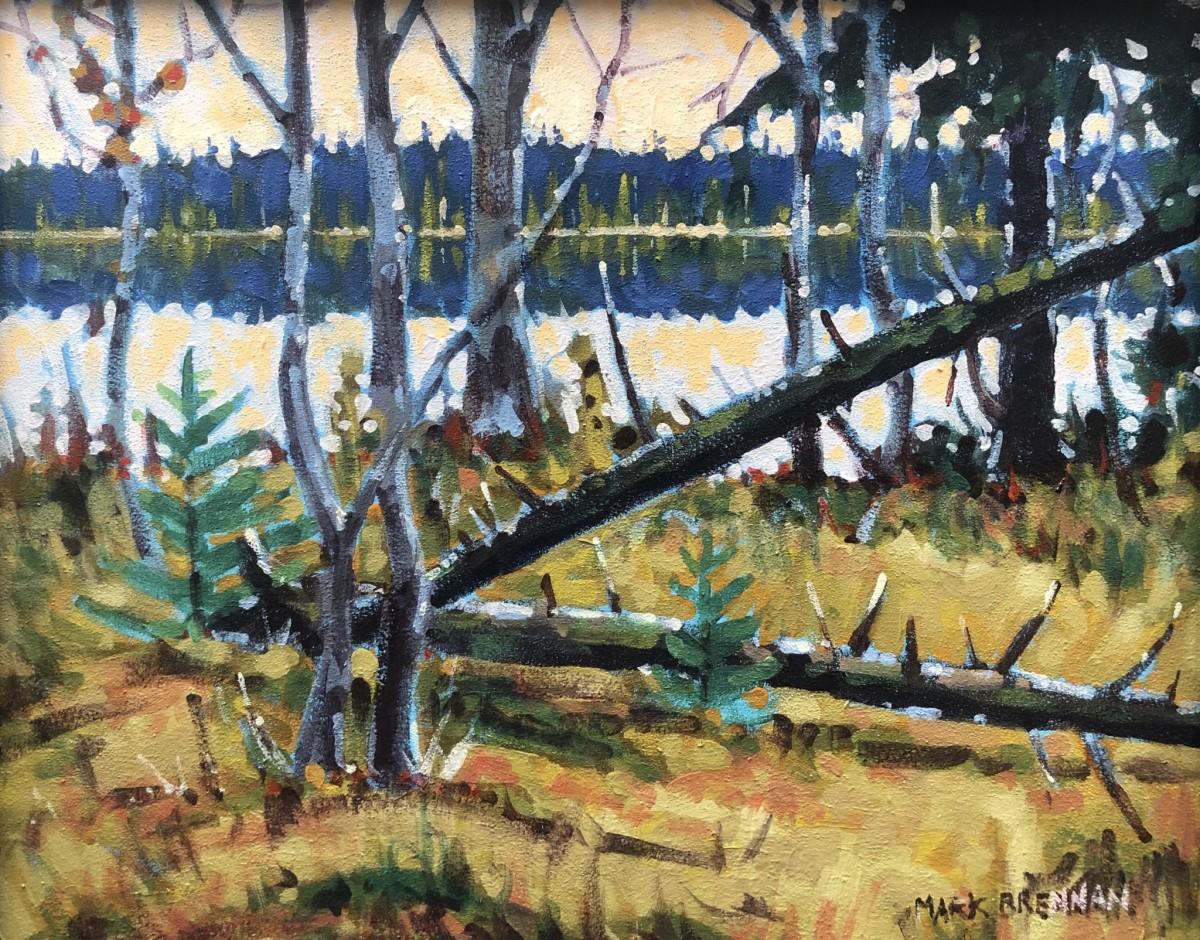 Sunrise at Long Lake, Nova Scotia by Mark Brennan