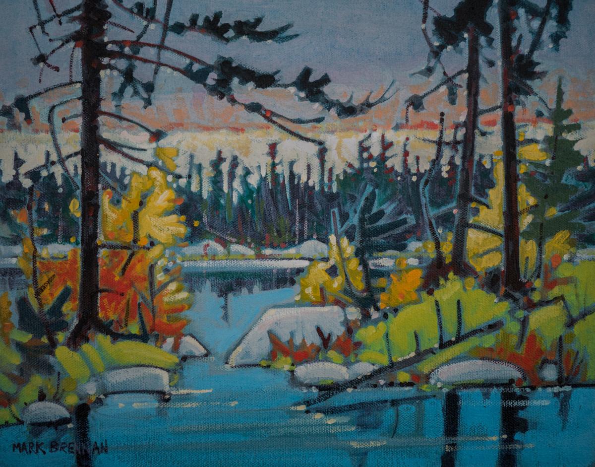 Backwood Boreal, Eastern Shore, Nova Scotia by Mark Brennan