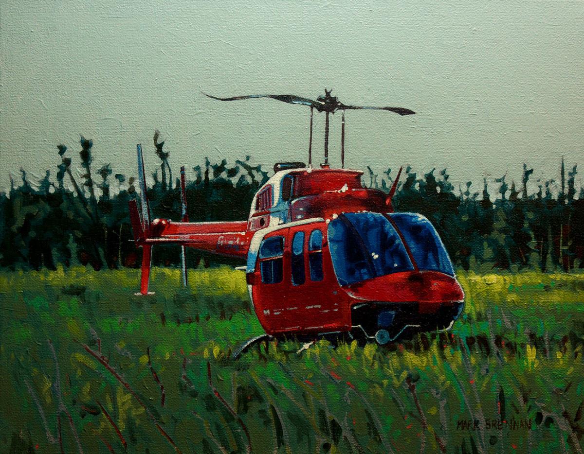 Coast Guard Visit, Seal Island, Southern Nova Scotia by Mark Brennan