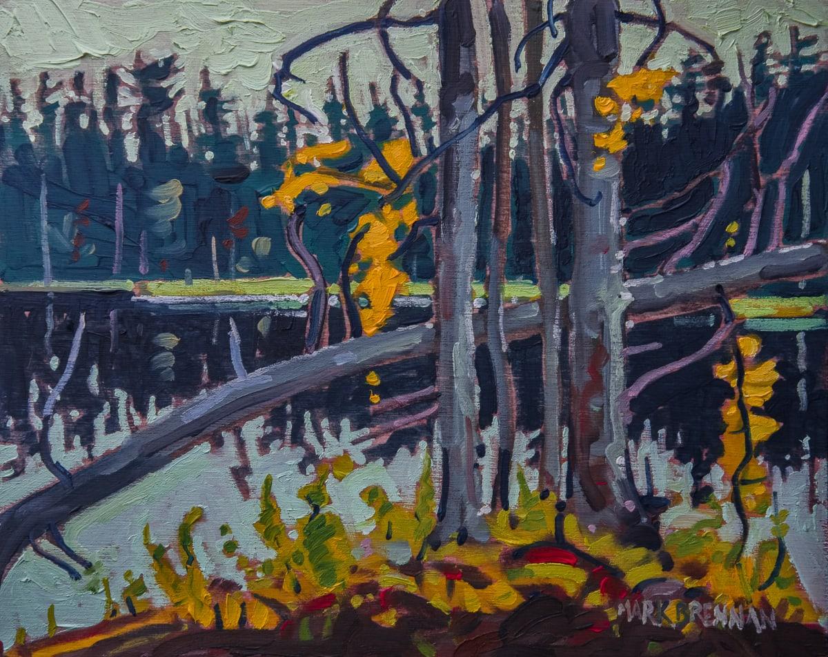 Stillwater, Creelmans Crossing, Nova Scotia by Mark Brennan