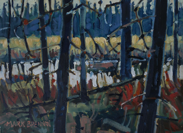 Swamp At Dawn, Glenelg, Nova Scotia by Mark Brennan