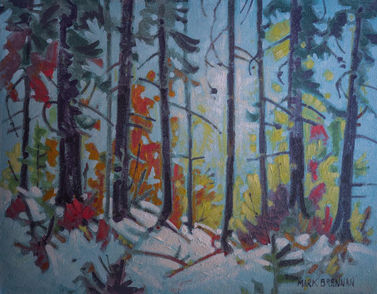 October Mist, Acadian Forest by Mark Brennan