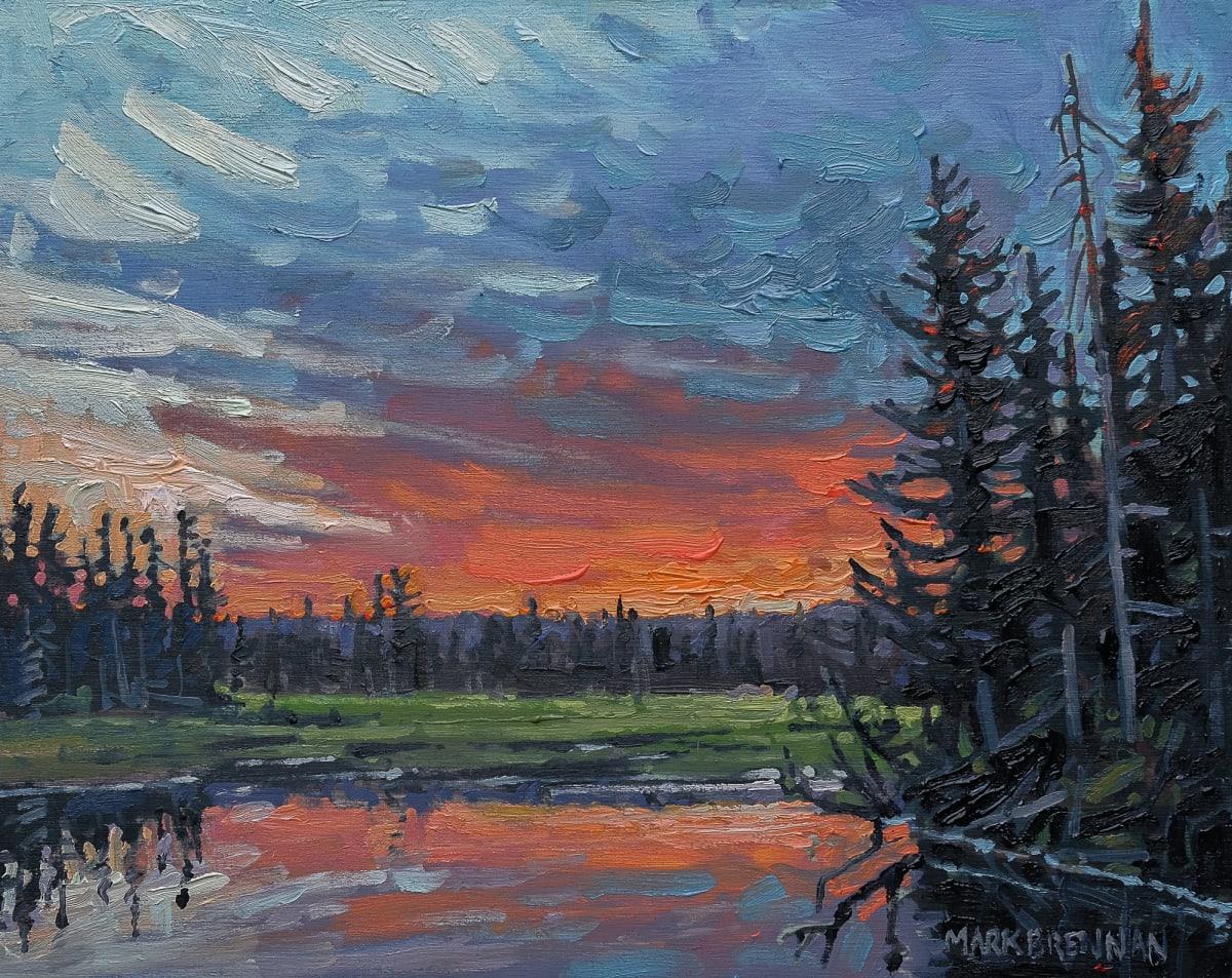 Spring Wetland, Whitehill, Nova Scotia by Mark Brennan