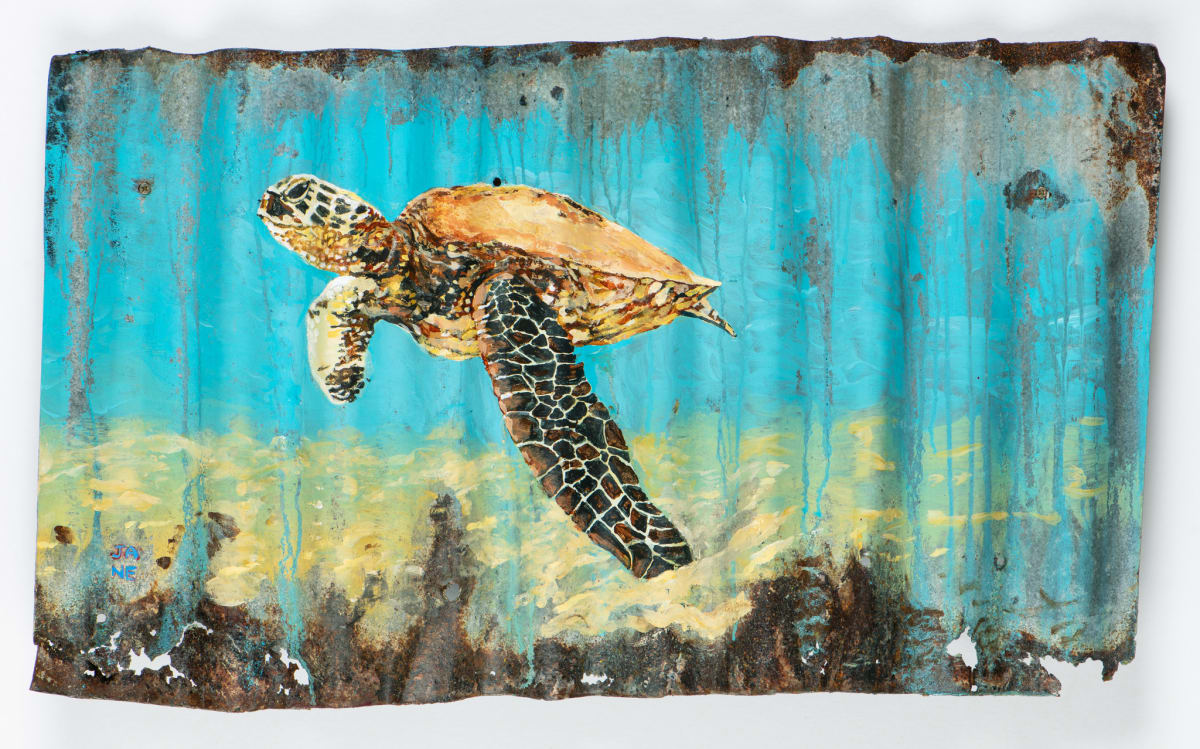 Animals Matter: Turtle in Turquoise