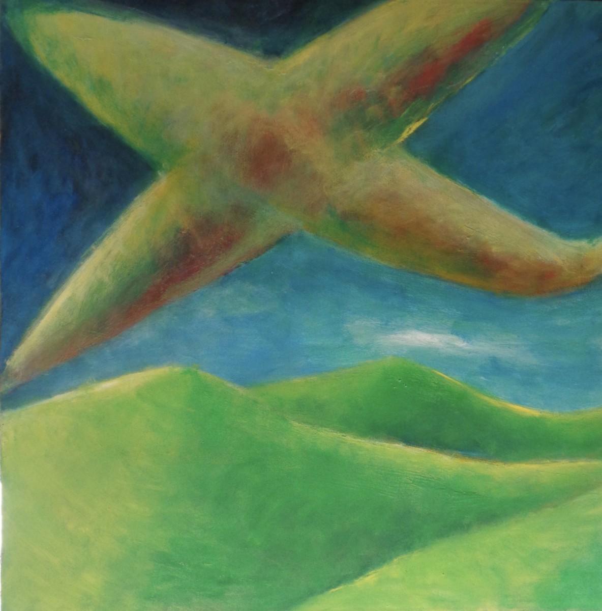 1211 Plane Over Hills by Judy Gittelsohn