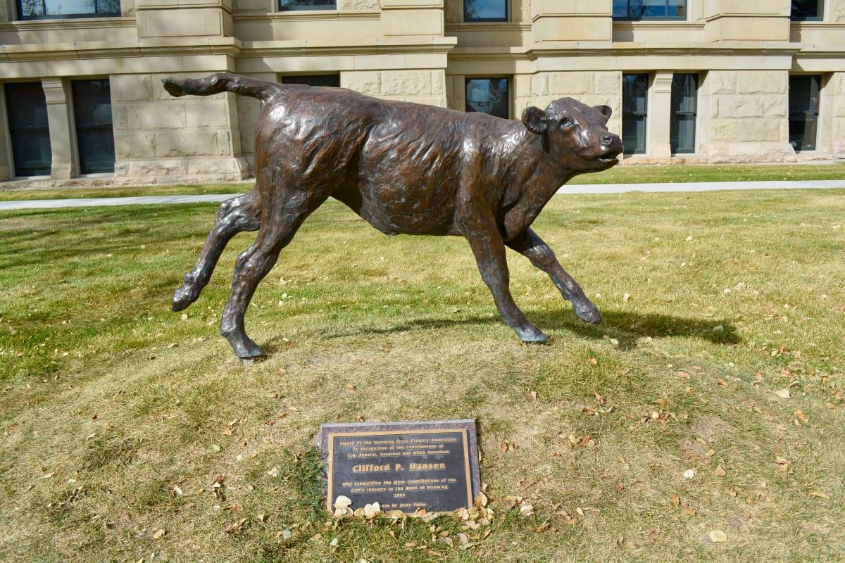 Calf by Jerry Palen