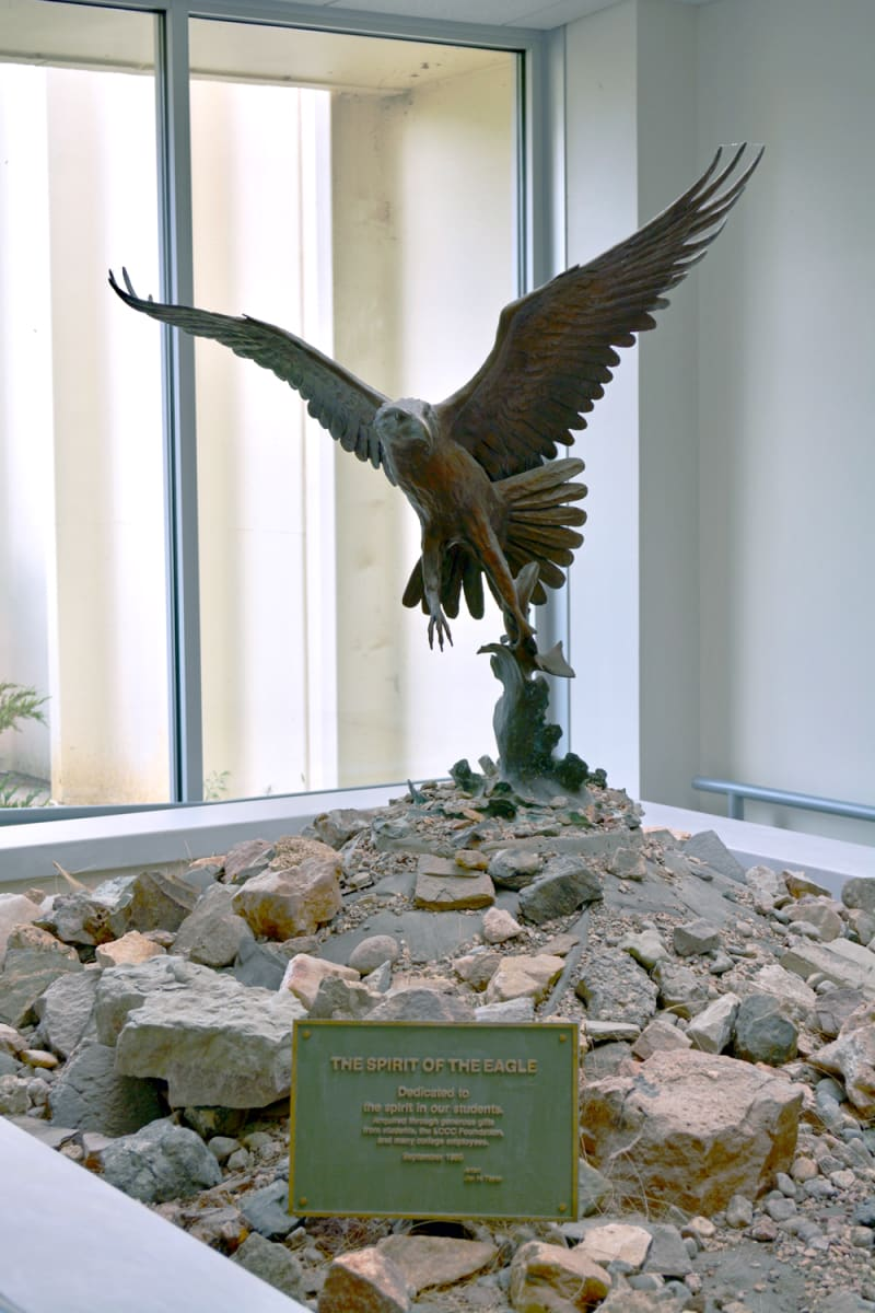 The Spirit of the Eagle by Jim Taylor
