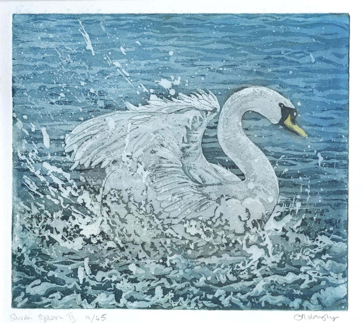 LON179, Swan Splash II 9/45 by Claire Longley