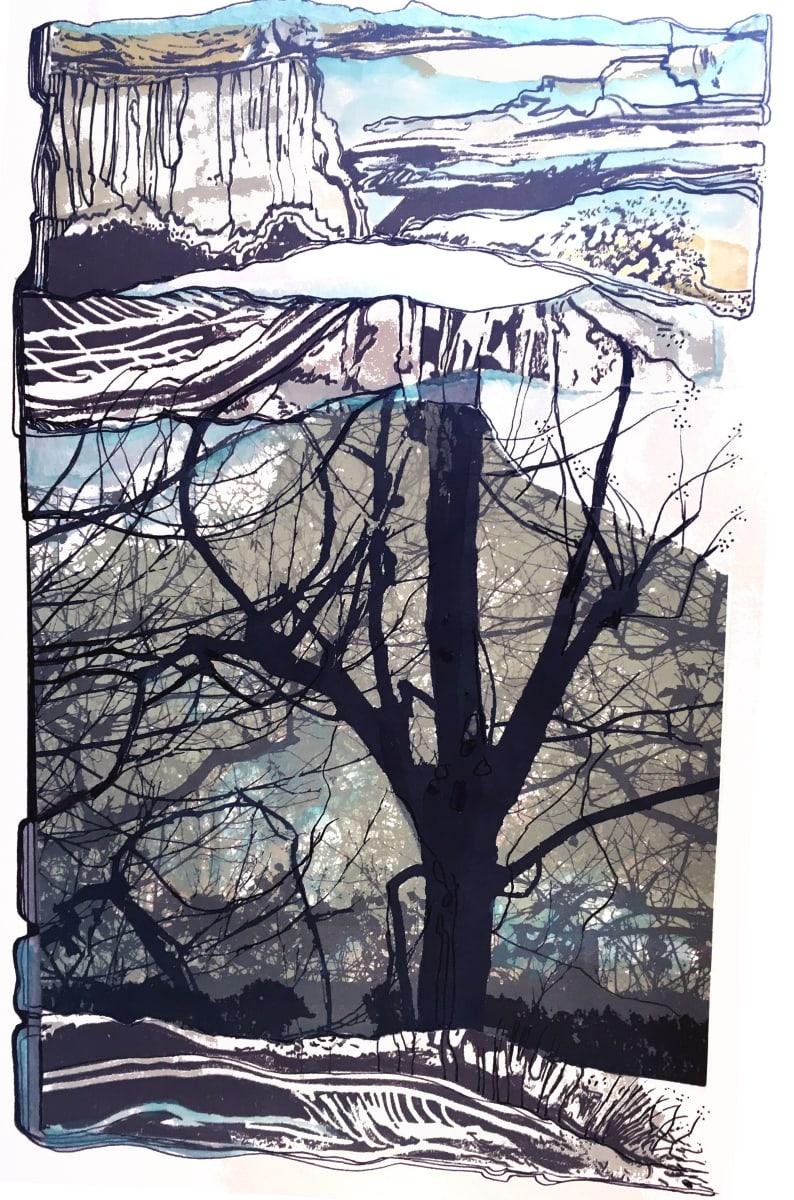 MCD170, Craggy Tree by Ruth McDonald