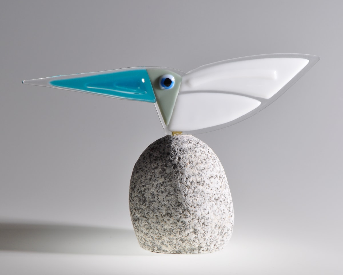 CHA163, Rare Bird No.30 by Paul Chave