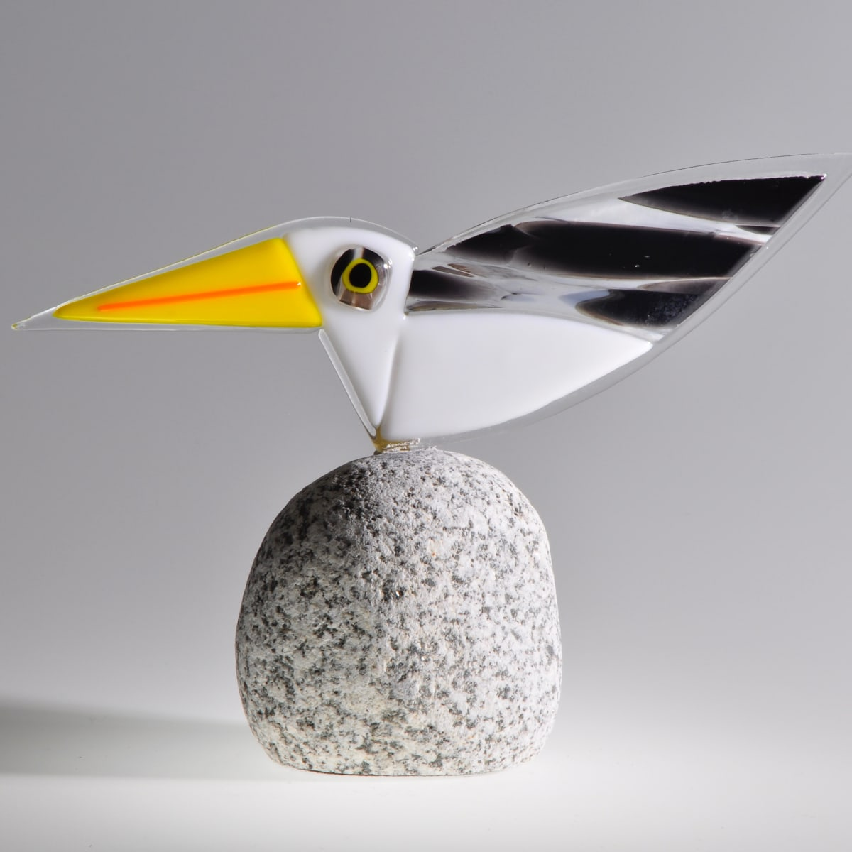 CHA164, Rare Bird No.31 by Paul Chave
