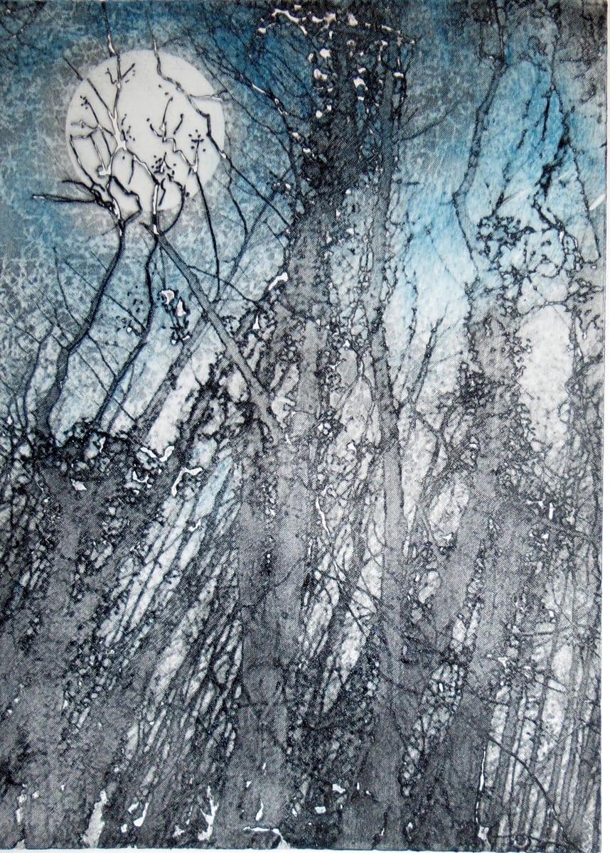 MCD001, Moonlit by Ruth McDonald