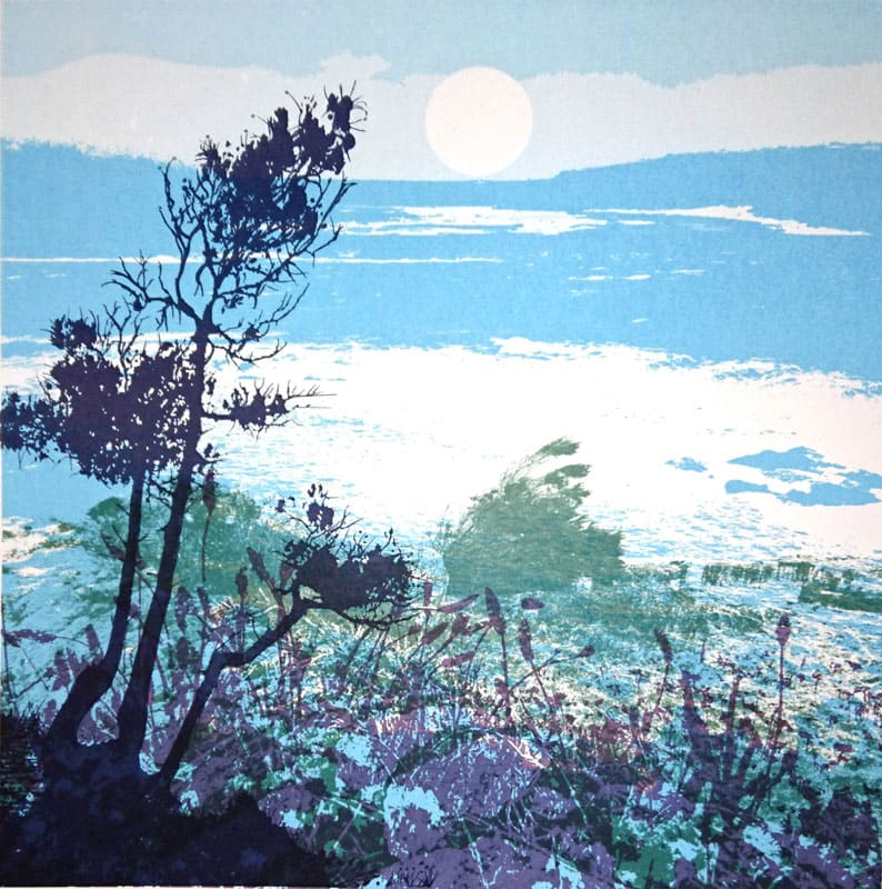 MCD152, Shoreline 2 by Ruth McDonald