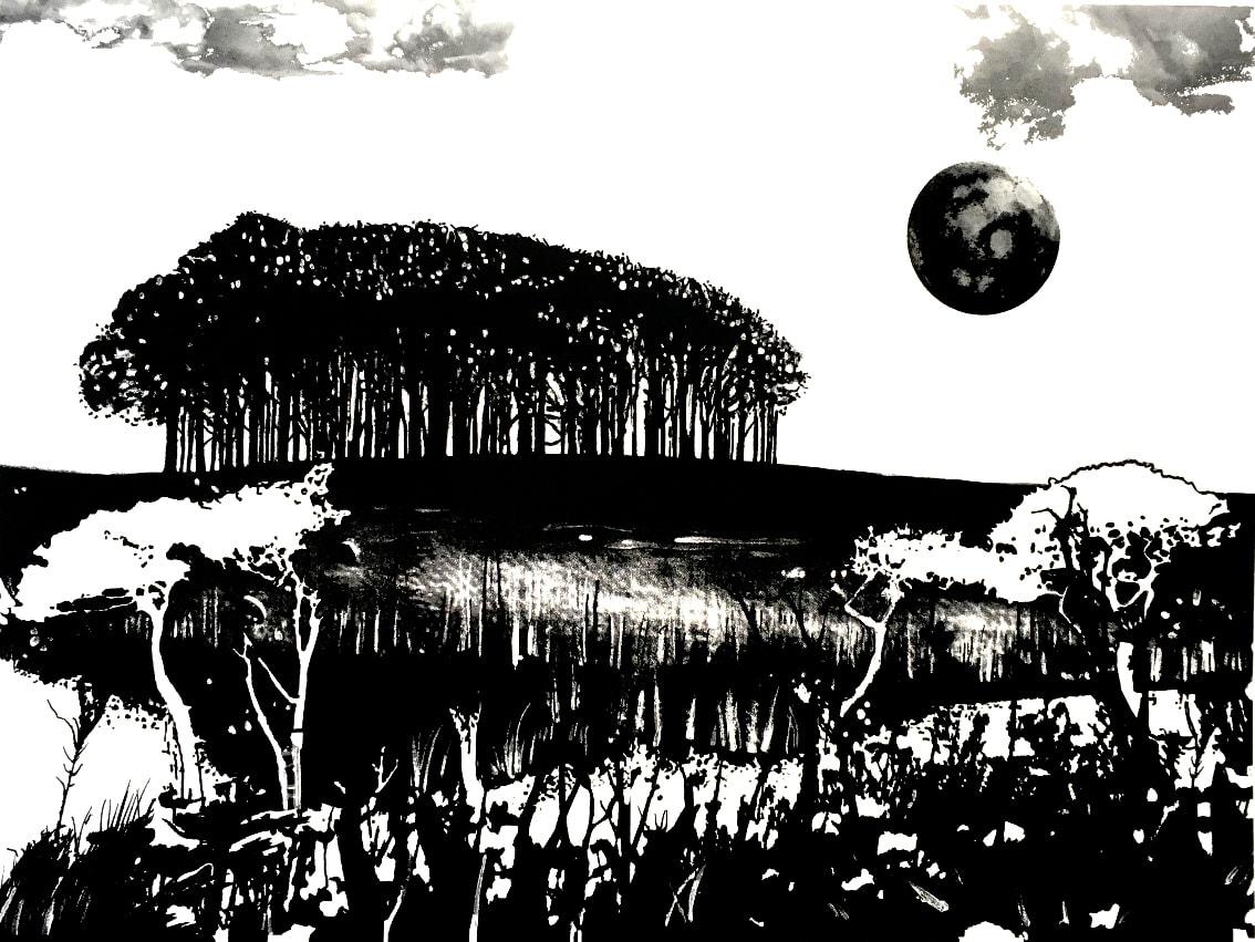 MCD157, Seeking New Landscapes 2 by Ruth McDonald