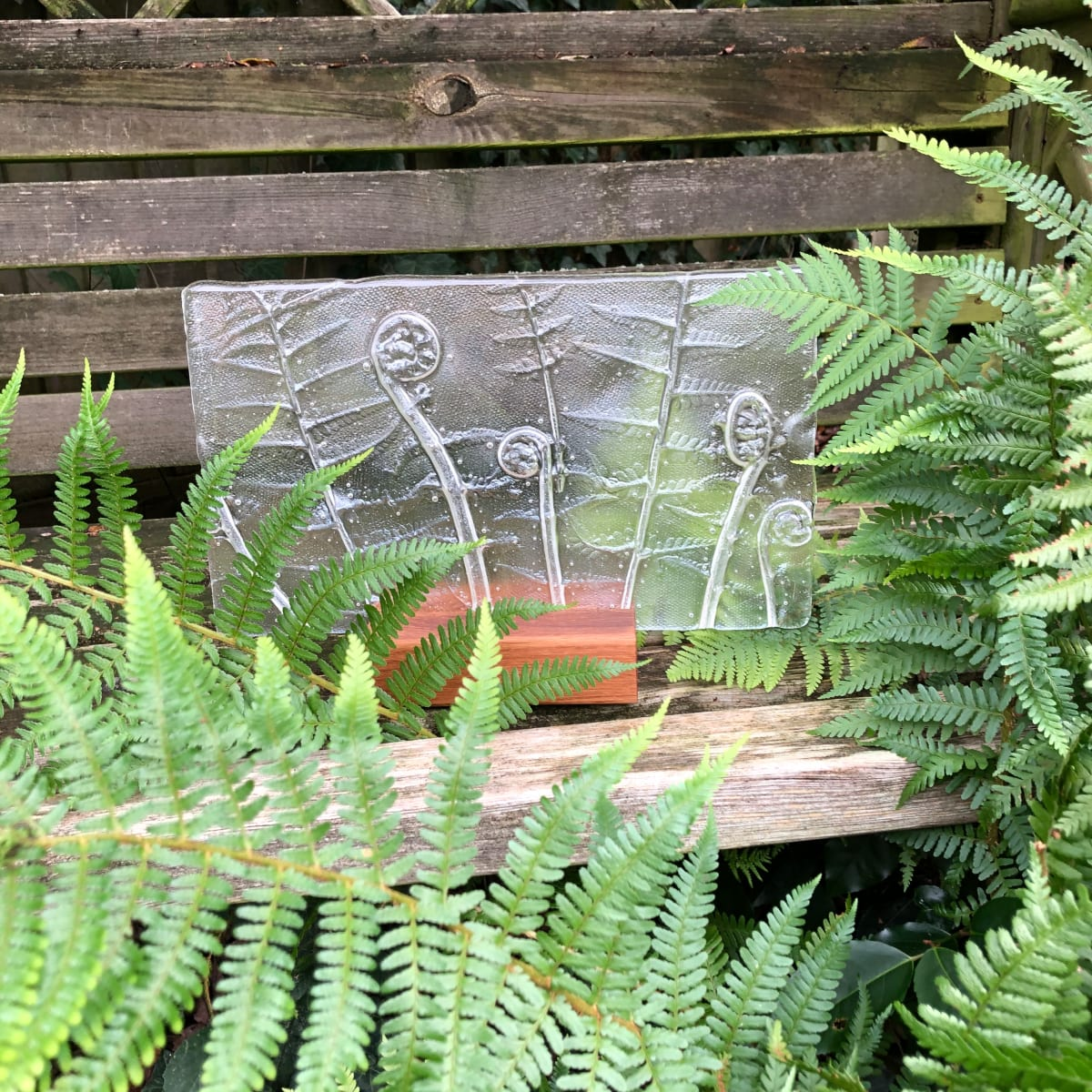 SHI309, Clear Ferns in oak block by Hilary Shields