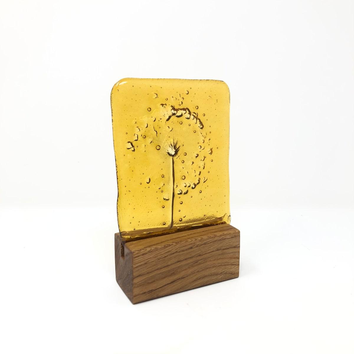 SHI316, Medium Amber Single Allium block by Hilary Shields