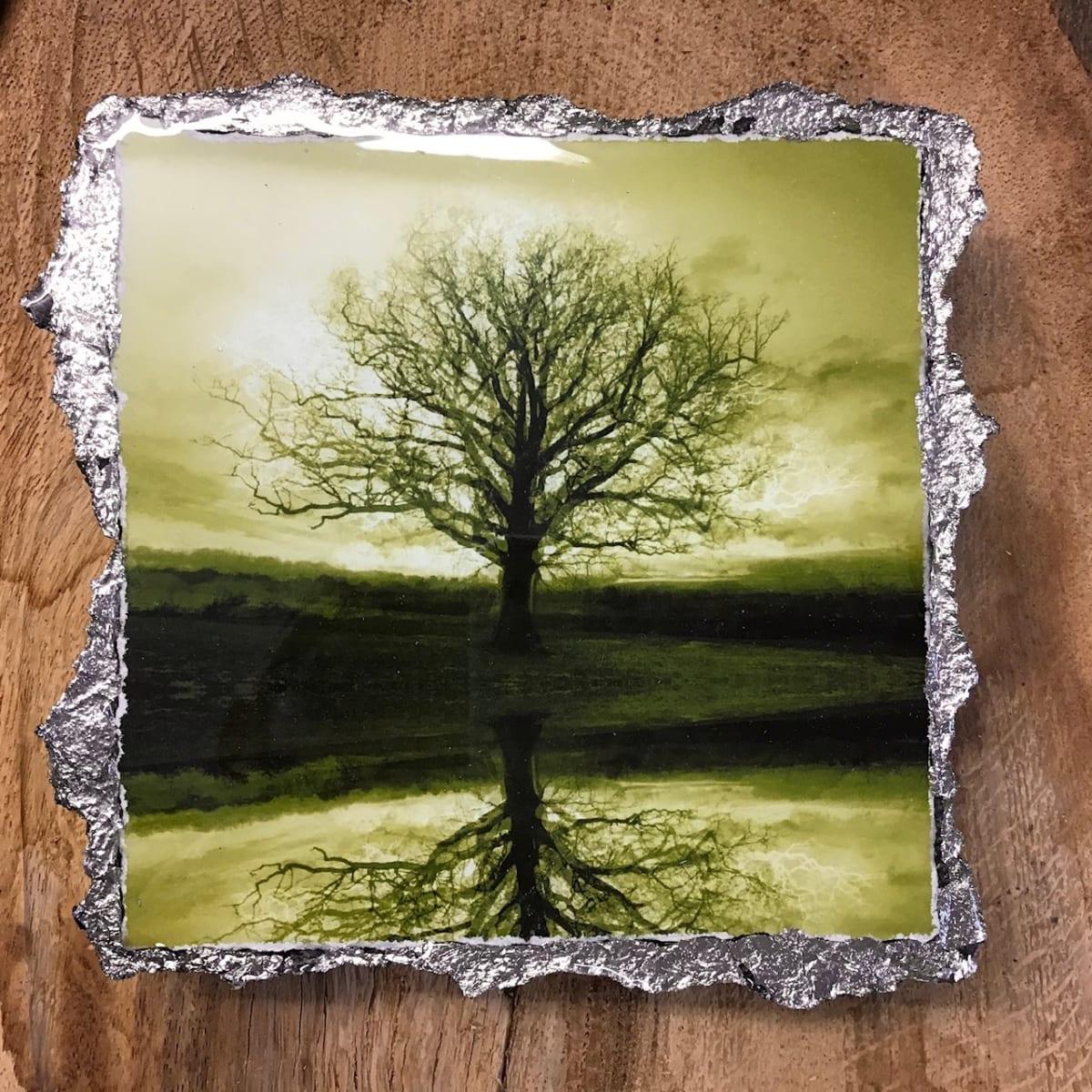 WEL144, Duotone 3_8 Green by Mark Welland