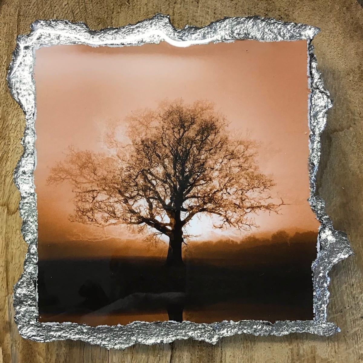 WEL150, Duotone Rising Sun Umber by Mark Welland