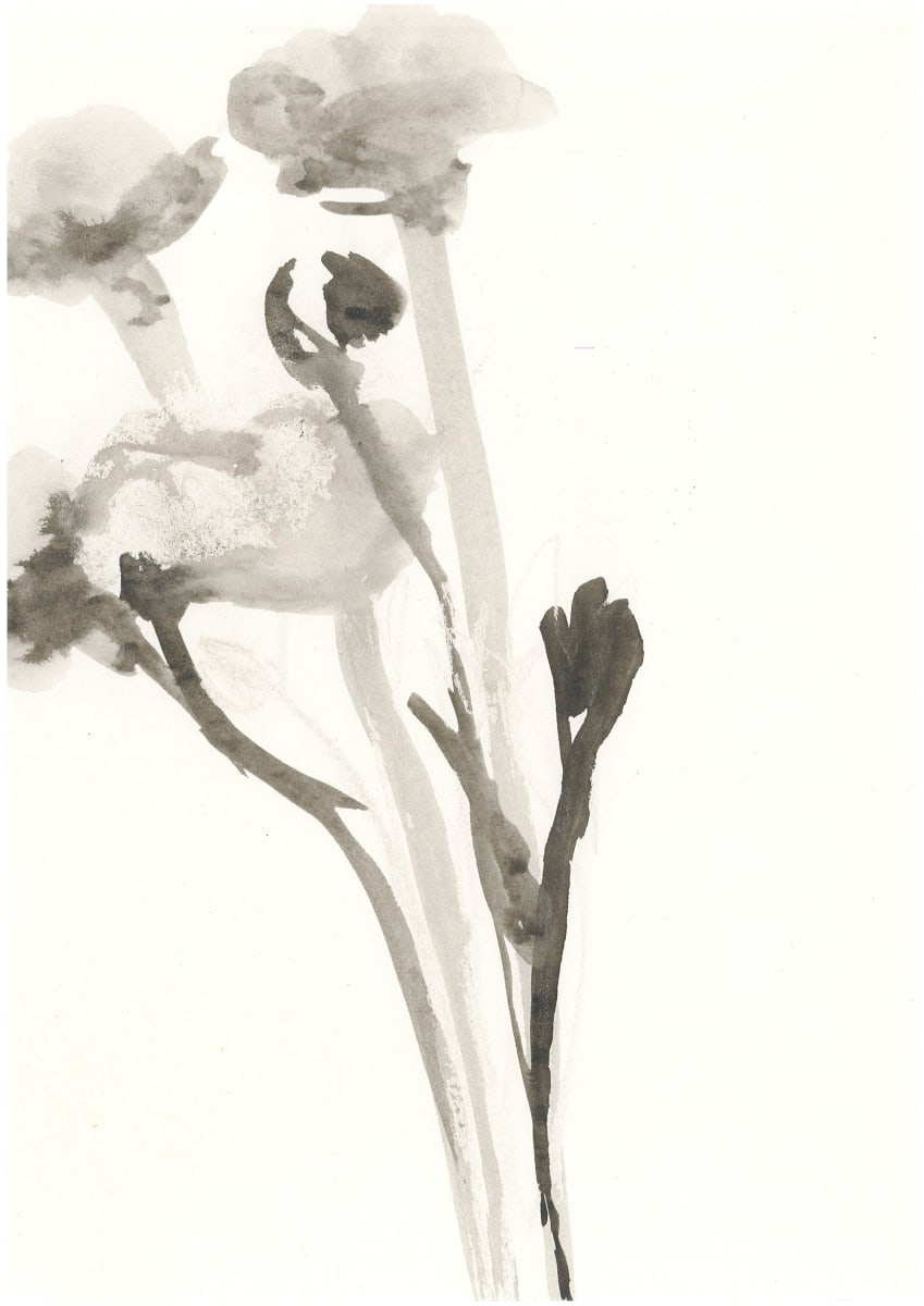 Blumen (Ink) by Alejandra Jean-Mairet