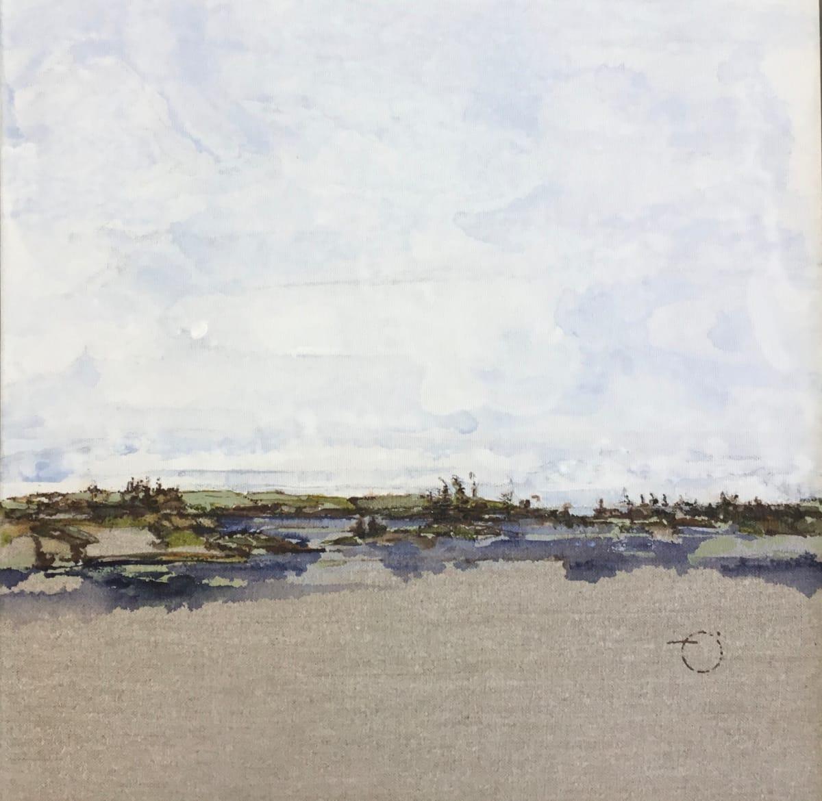 Inland Pond Series IP43-47 by Barbara Houston