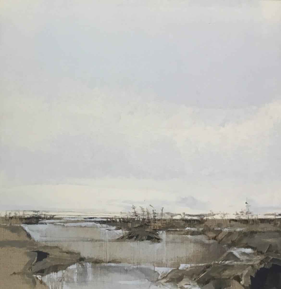 Inland Pond IP 43-40 by Barbara Houston