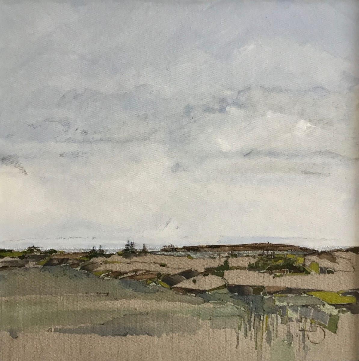 Inland Pond IP 43-39 by Barbara Houston