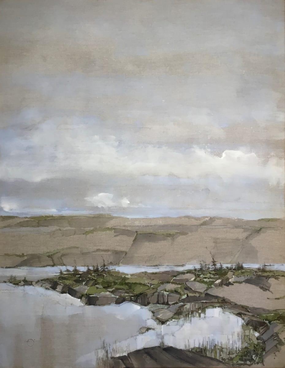 Inland Pond IP 43-16 by Barbara Houston