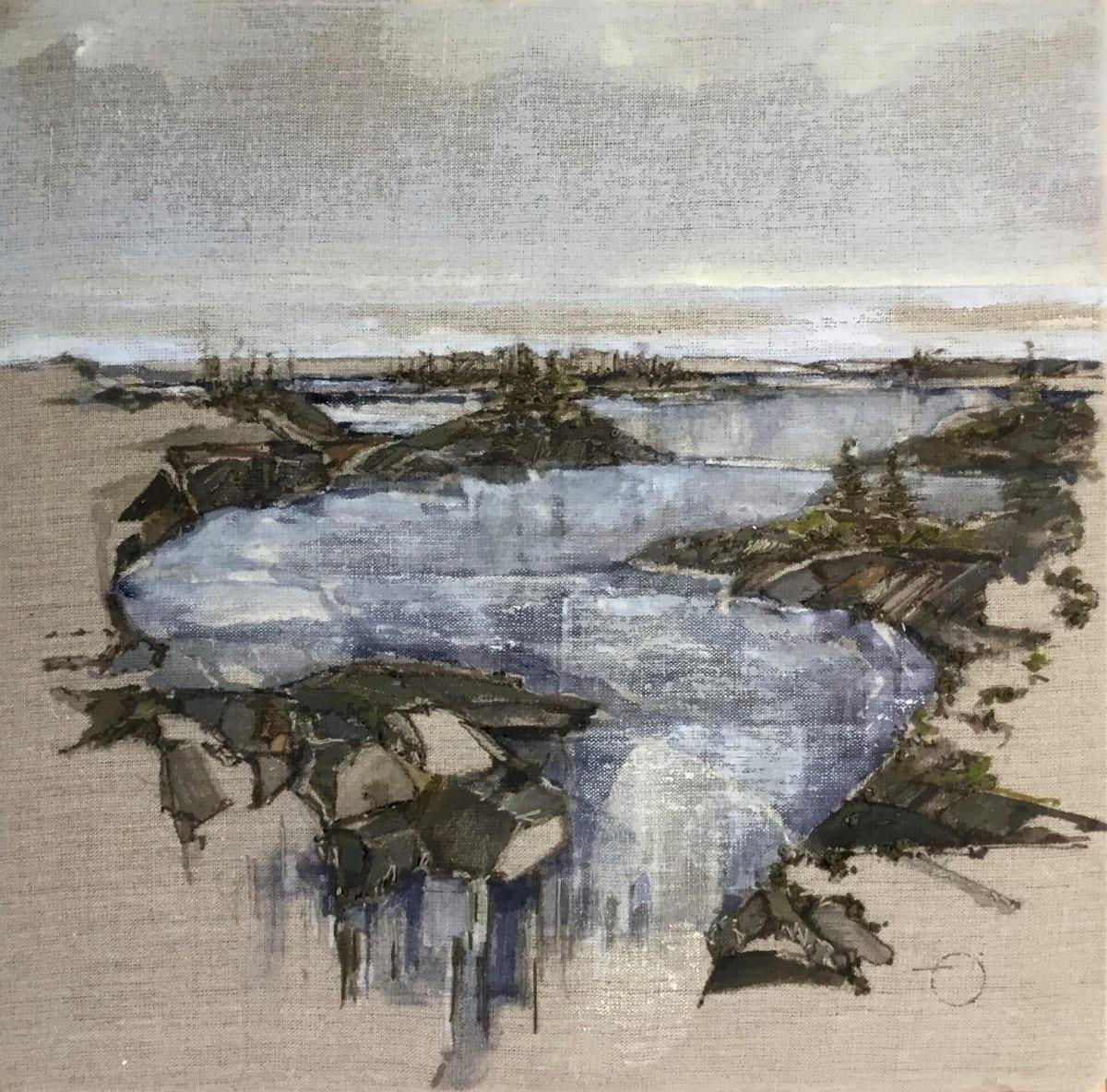 Inland Pond IP43-9 E by Barbara Houston