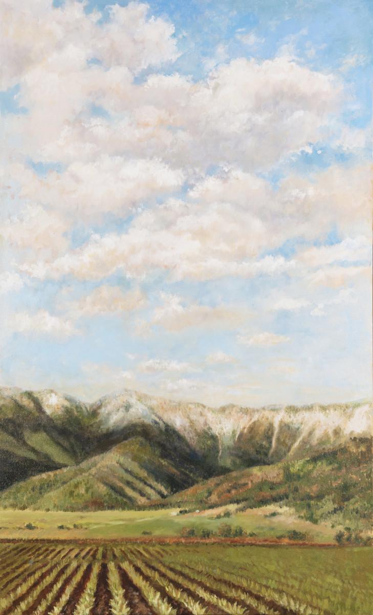Montana Magnificence