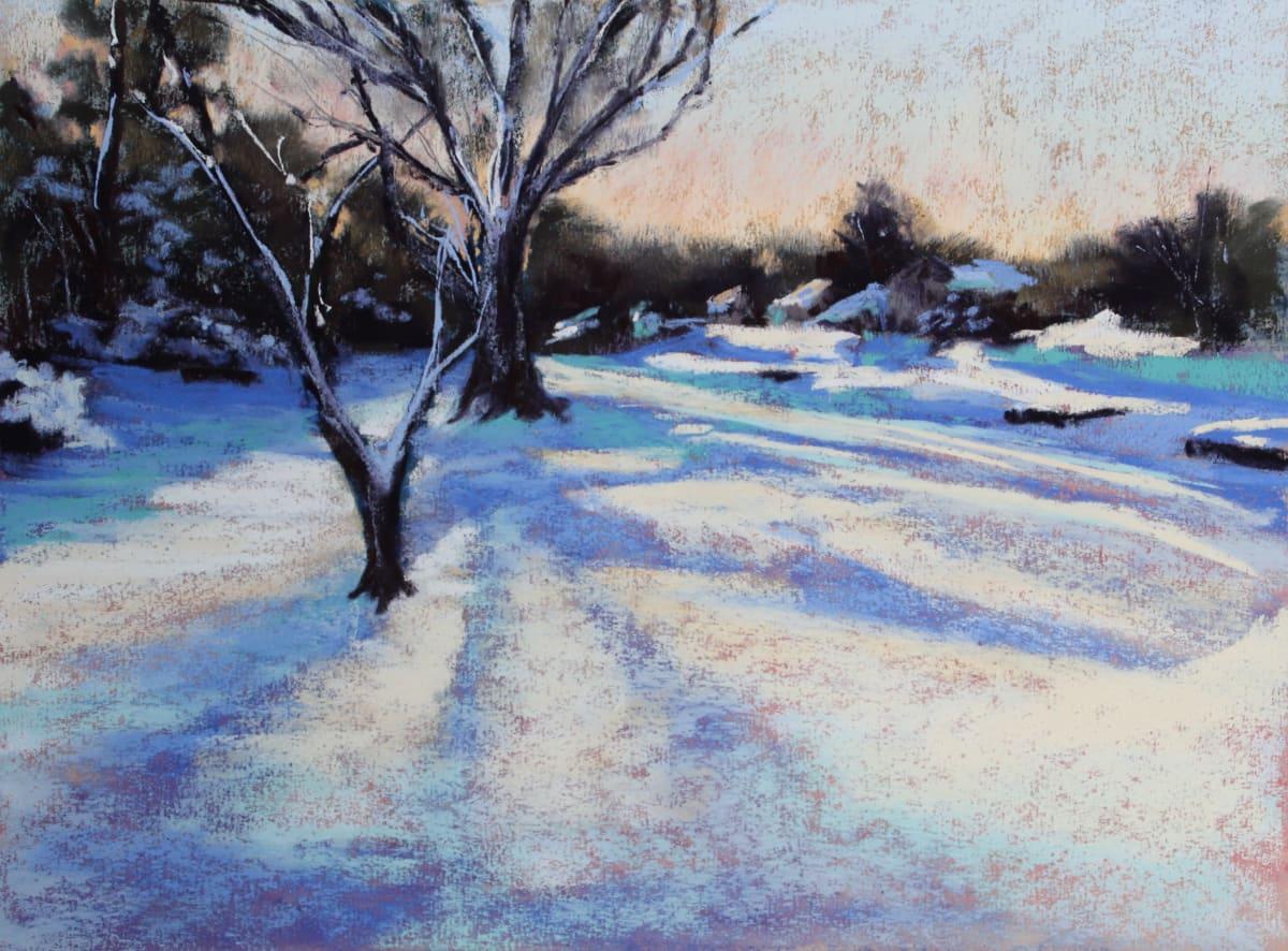 Snow Shadows by Renee Leopardi