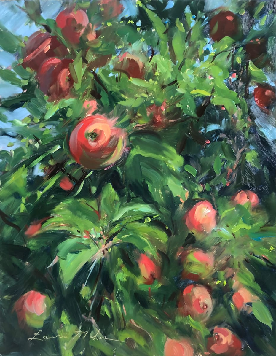 Apple Trees at Melick's Farm 2 by Laurie Maher