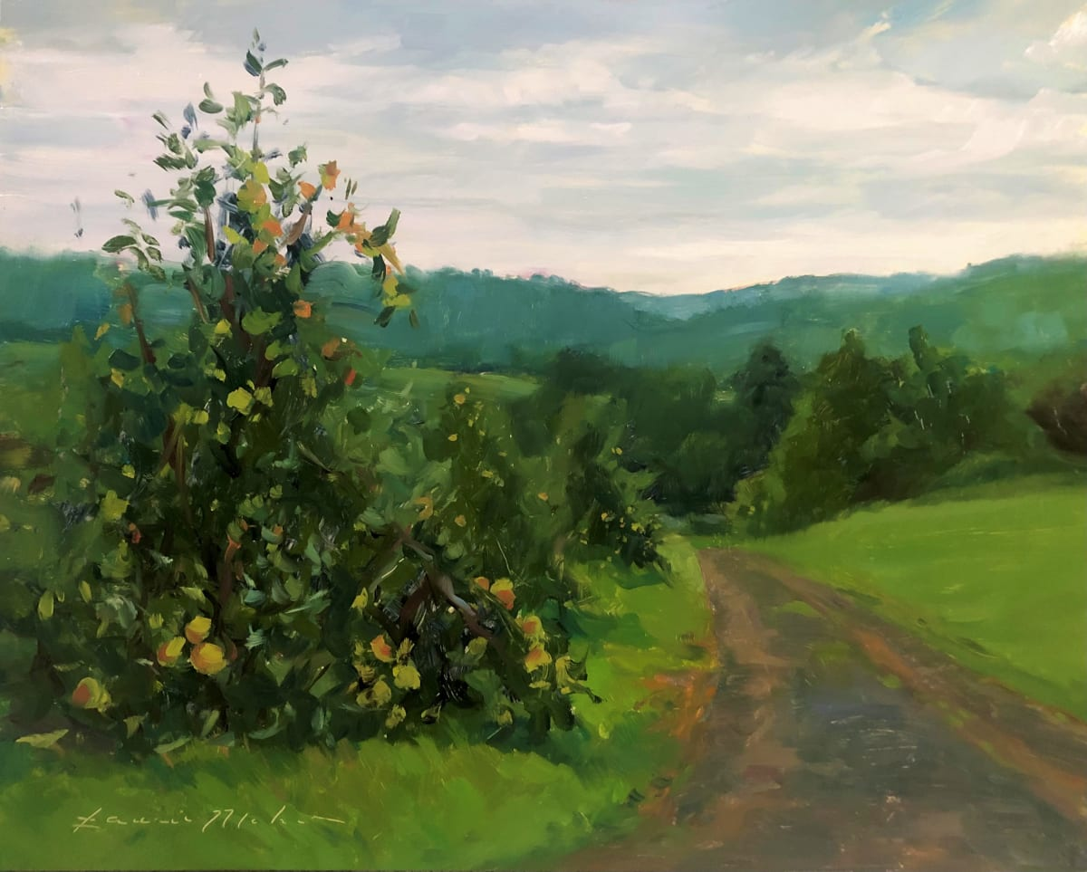 Apple Trees by Laurie Maher